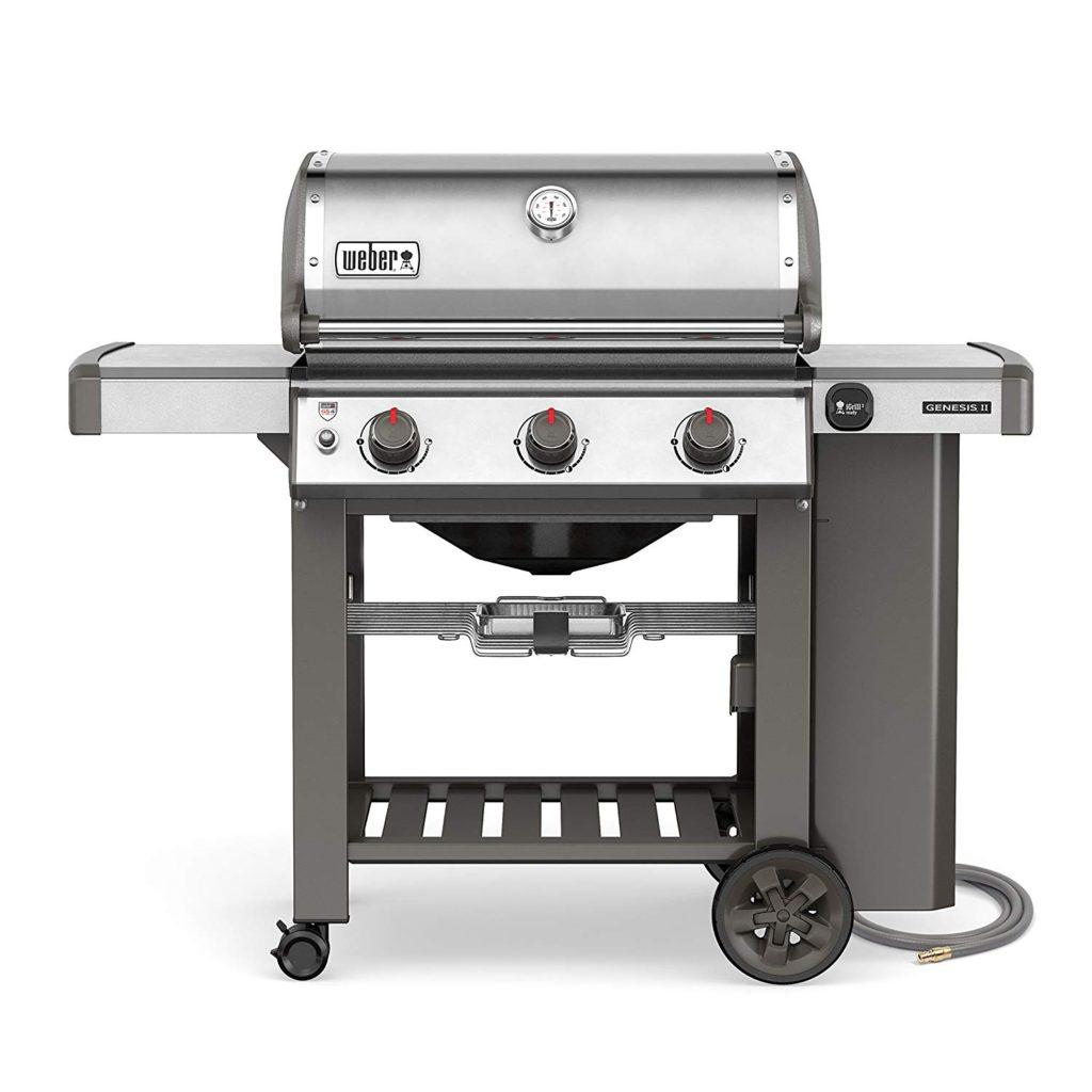 Weber S-310