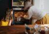 best oven in canada