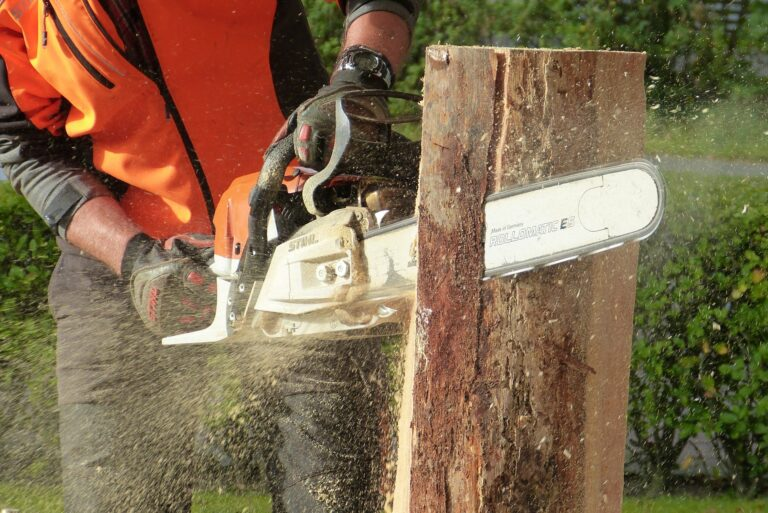 Top 13 best chainsaw sharpeners 2021