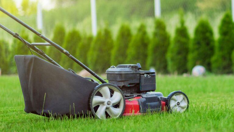 Top 9 Best Self-Propelled Lawn Mower in 2021