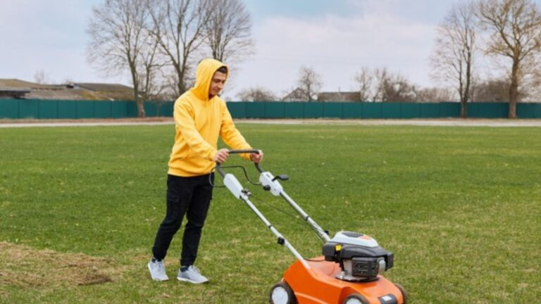 Top 13 Best Lawn Mowers for Small Yards in 2021