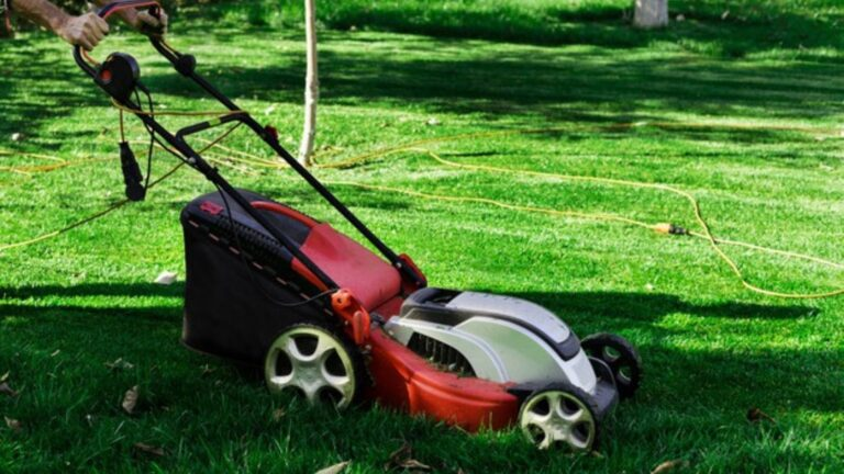 Top 13 Mowers For Hills In 2021