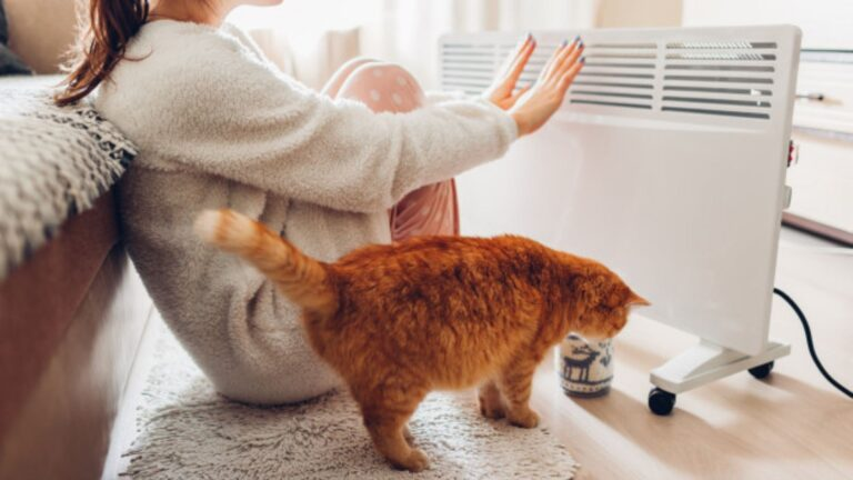 Top 13 best heaters for large rooms