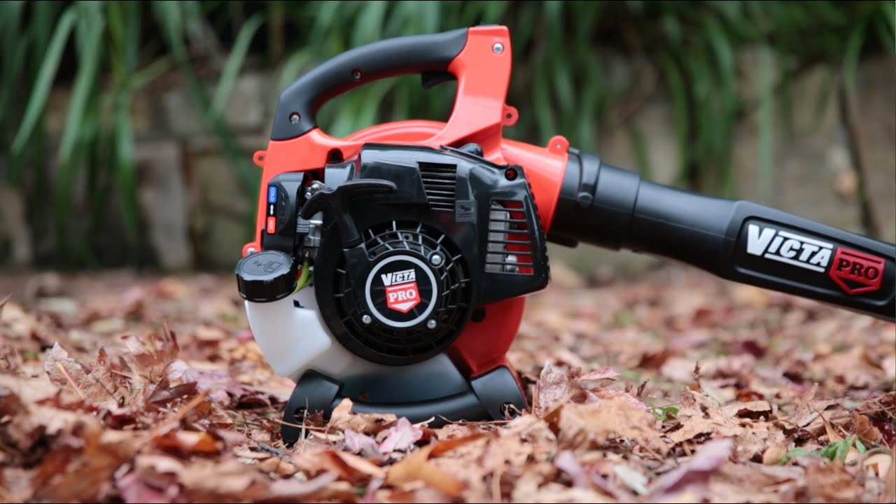 10 Best Leaf Blowers in 2020 1