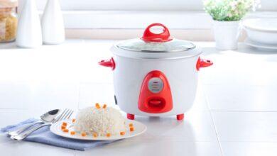 Top 13 best rice cooker in 2020 11
