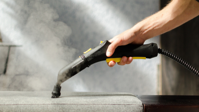 Top 13 Best Steam Cleaners in 2020 3