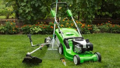 Top 13 best riding lawn mower in 2021 2