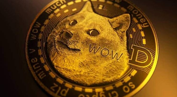 """Dogecoin price dwindles with Elon Musk's reference to it as a """"hustle"""" during Saturday Night Live appearance 1"""