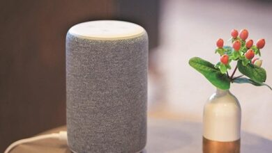 Alexa has rolled out few useful features to allow its users to cope with Covid19 6