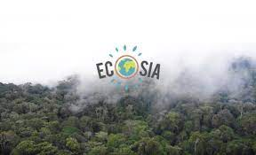 'Ecosia', a sustainable search engine, is gaining traction on the internet 2
