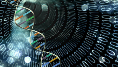 New DNA-Based Processor Technology Proposed by Researchers 2