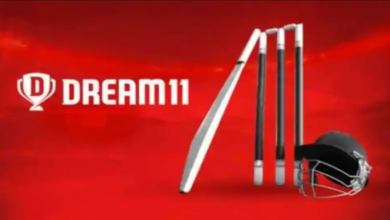 Dream11 halted operations in Karnataka following an FIR have been filed against the company's founders 8