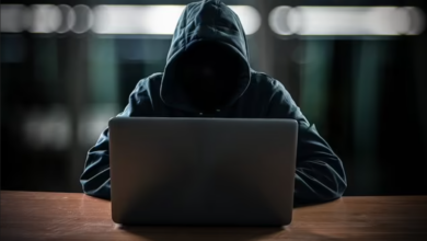 Following the takedown of the dark web's largest illicit business, police arrested 150 accused 4
